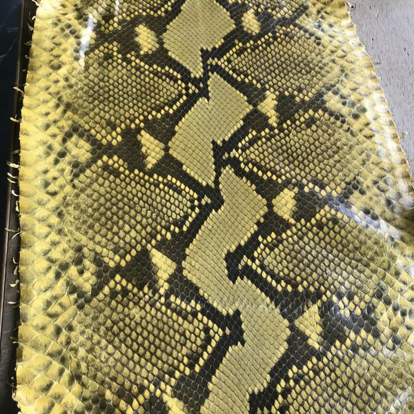 """""""SKU:10074 NAME:python leather acquarello lux yellow bumblebee ANIMAL:python leather SPECIE:reticulatus ARTICLE:acquarello lux COLOR:yellow bumblebee USE:leathergoods, shoes SIZE:27+ THICKNESS:0,4/0,6 DESCRIPTION:soft, semishinny """""""