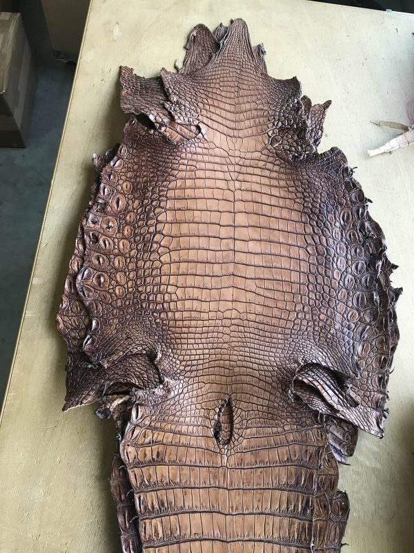 """SKU:10130 NAME:crocodile leather lave noce ANIMAL:crocodile leather SPECIE:niloticus ARTICLE:lave COLOR:noce USE:leathergoods, shoes SIZE:36-39, 40-44 THICKNESS:1,0/1,2 DESCRIPTION:vintage, sporty, semishinny, soft """
