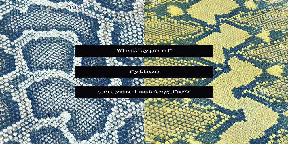 The python leather: the most used exotic skin