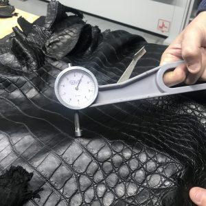 crocodile garment